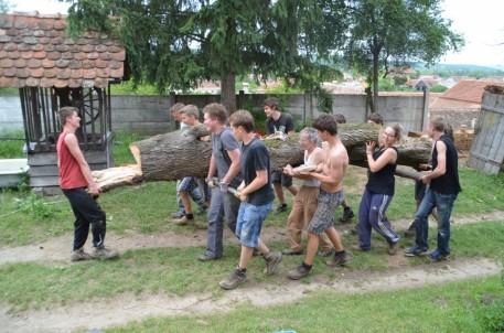 Viele Hände, schnelles Ende – der vertrocknete Baum wurde von den Waldorfschülern entfernt. Foto: Privat